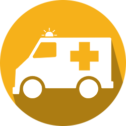 Opioid EMS icon
